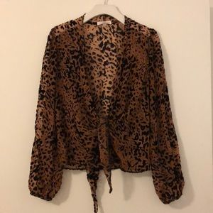 Honey Punch Leopard Sheer Top (Matching Set)